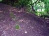 Der Hügel gleich hinter den Buchenweg-Grundstücken hat es in sich: Er steckt voller Dioxin.