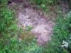 Staub vom Sodabuckel ist gefährlich. Eigentlich müsste der Boden komplett bewachsen sein.